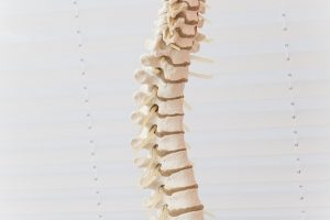 What is a Spinal Subluxation1